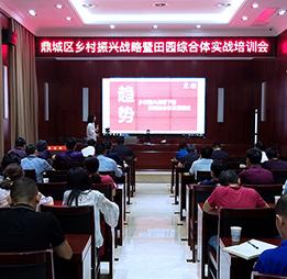 湖南省常德市鼎城區鄉村振興暨田園綜合體實戰峰會